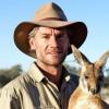 The Australian hero who saves orphaned kangaroos for a living